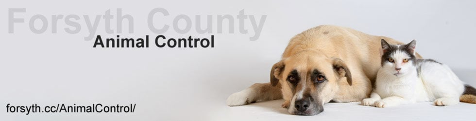 Forsyth County Animal Control