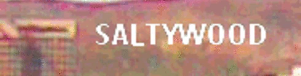SALTYWOOD T.V.