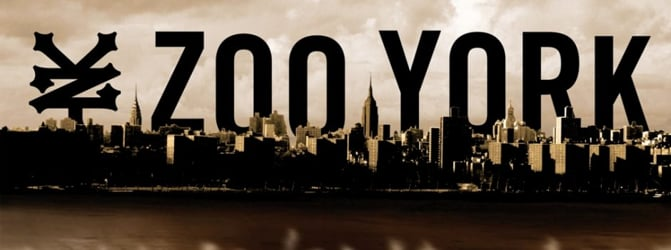 THE ZOO YORK CHANNEL