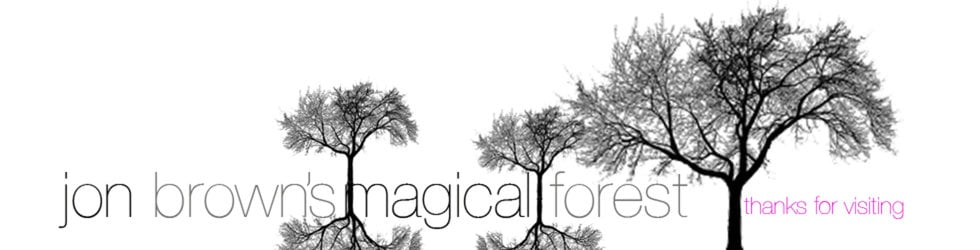 Jon Brown's Magical Forest