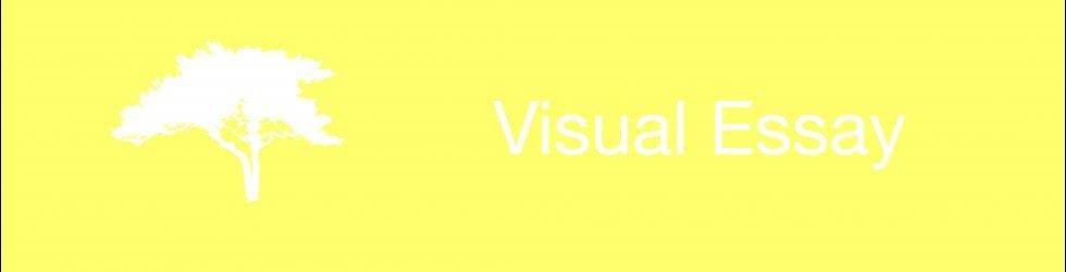 Visual Essay