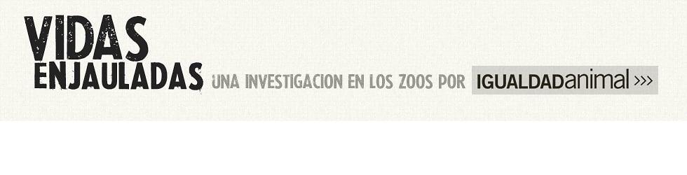Vidas enjauladas | Una investigación en los zoos realizada por Igualdad Animal