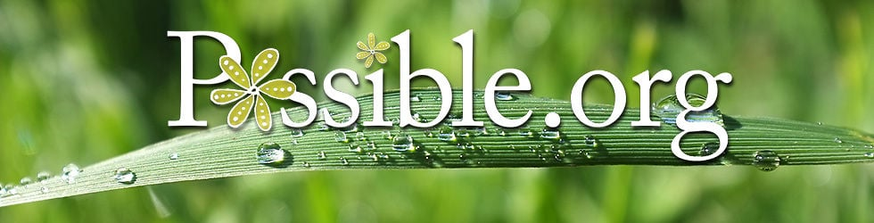Possible.org (English)