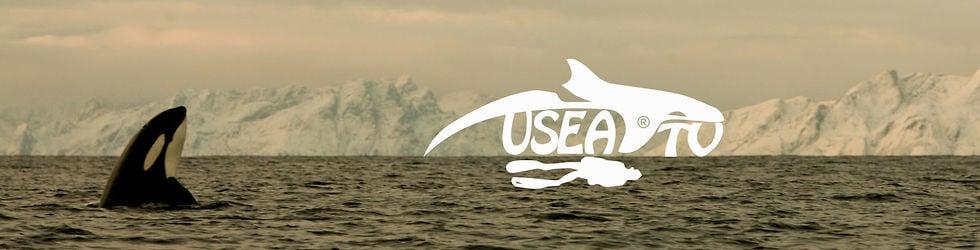 USEA-TV
