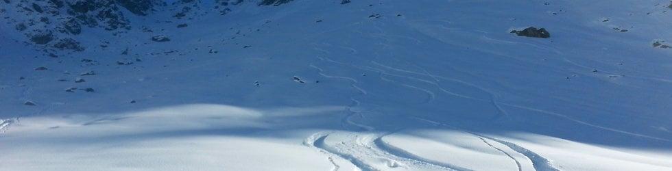 Snowboard and splitboard in powder