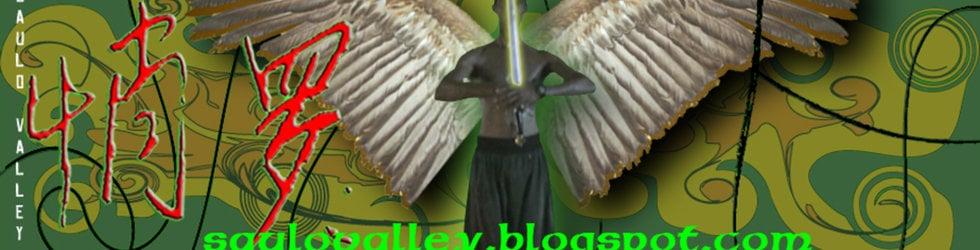 SAULO VALLEY TVSHOW