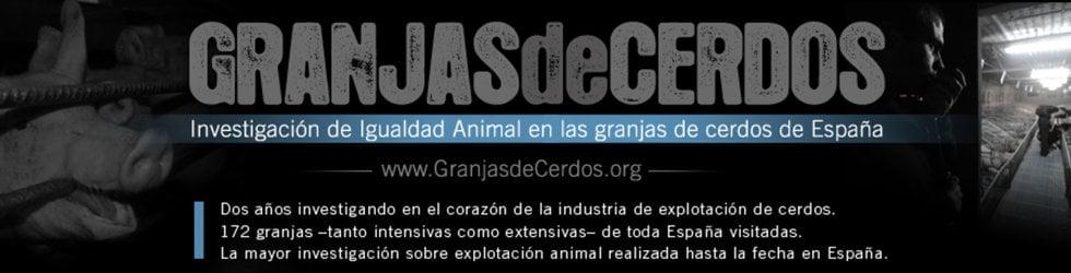 Investigación en Granjas de Cerdos