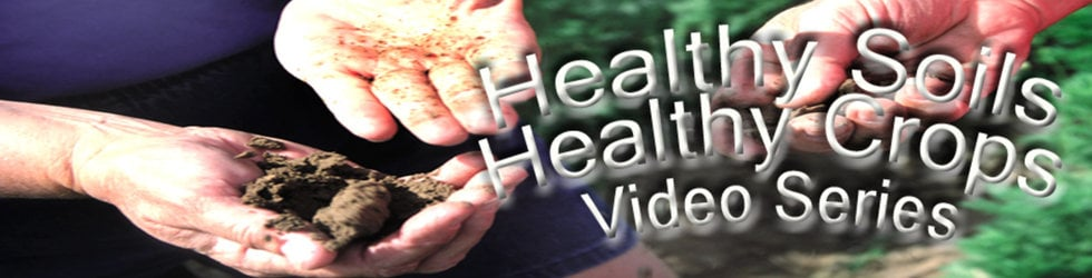 Healthy Soils, Healthy Crops
