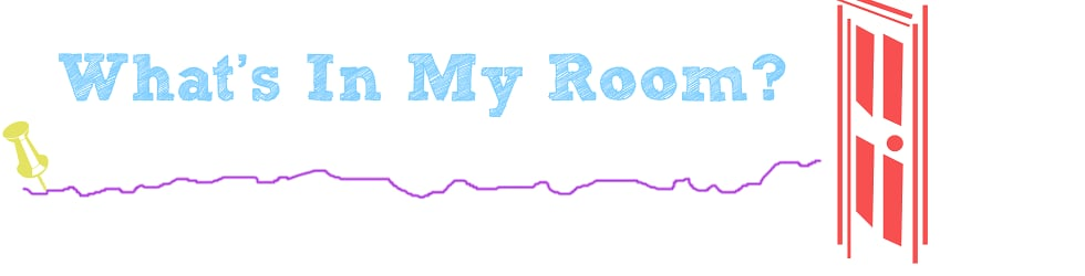 What's In My Room?