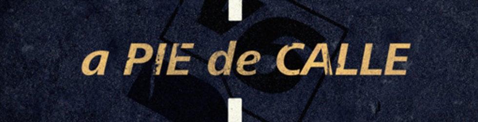 APDC A Pie de Calle 2014