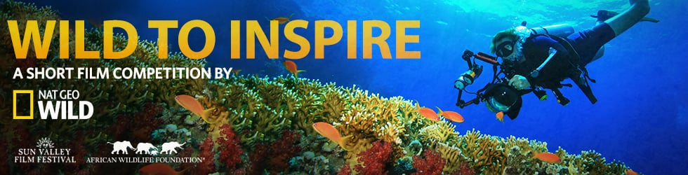 Second Annual Wild to Inspire Short Film Contest