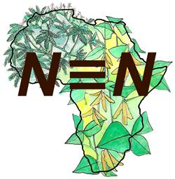 N2AfricaTV