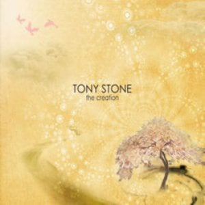 Profile picture for Tony Stone