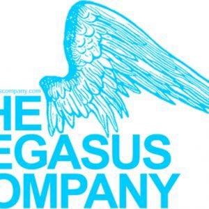 Profile picture for The Pegasus Company