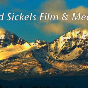 Profile picture for Edward Sickels Film & Media