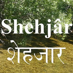Profile picture for Shehjar Online