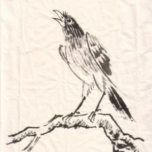 Profile picture for U.V28