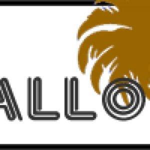 Profile picture for BmxMallorca