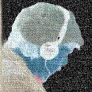 Profile picture for Falesch