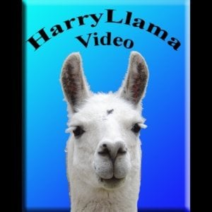 Profile picture for Harry Llama