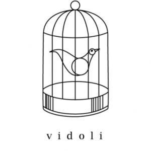 Profile picture for Michael Vidoli