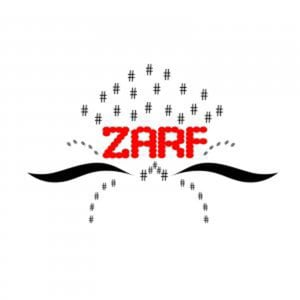 Profile picture for Zarf