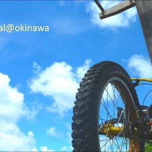 Profile picture for biketrial@okinawa