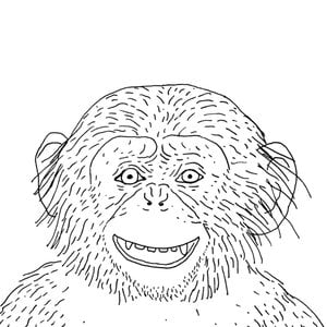 Profile picture for Elliott Burford