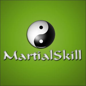 Profile picture for MartialSkill.com