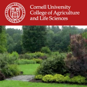 Profile picture for Cornell Sustainable Landscapes