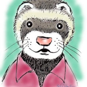 Profile picture for Joe Ferret