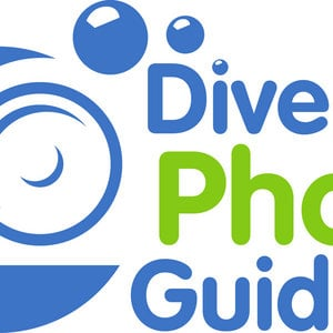 Profile picture for DivePhotoGuide.com