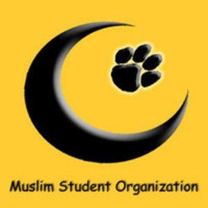 Profile picture for MSO Mizzou