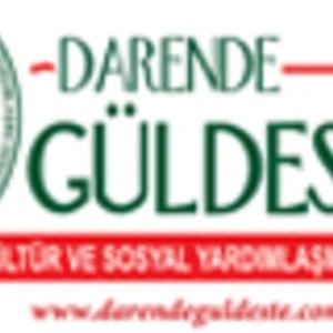 Profile picture for darende guldeste