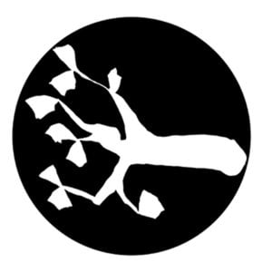 Profile picture for KNOPPAR Sweden