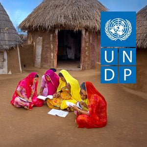 Profile picture for UNDP