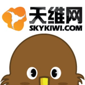 Profile picture for Skykiwi.com