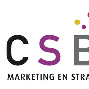 Profile picture for ICSB Marketing en Strategie