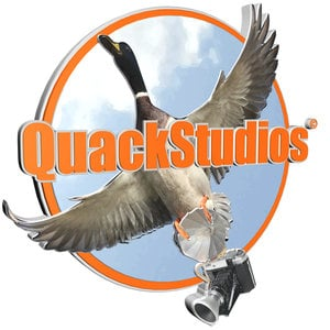 Profile picture for QuackStudios