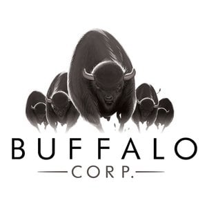Profile picture for BUFFALO CORP.