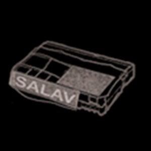 Profile picture for SALAV