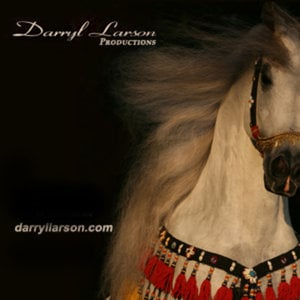 Profile picture for Darryl Larson