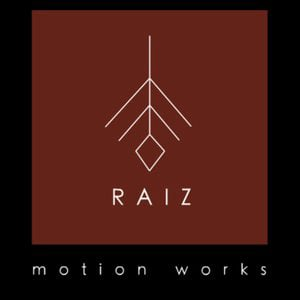 Profile picture for Raiz motion works
