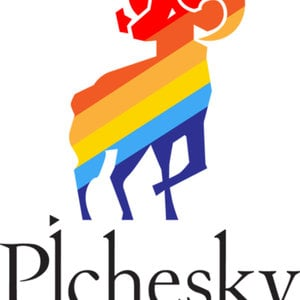 Profile picture for Pichesky Agency