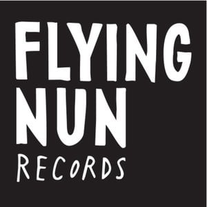 Profile picture for Flying Nun Records