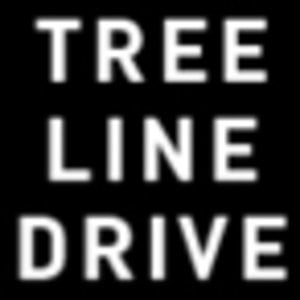 Profile picture for TREE LINE DRIVE