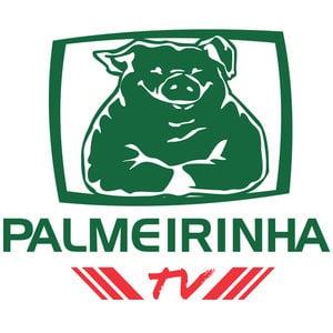 Profile picture for PalmeirinhaTV