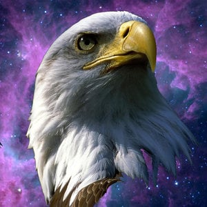 Profile picture for Force Of Freedom