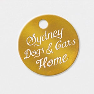 Profile picture for Sydney Dogs & Cats Home