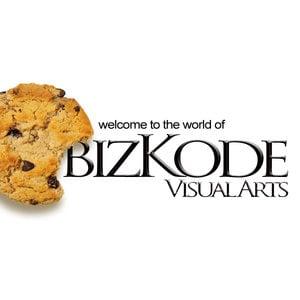 Profile picture for Bizkode Visual Arts